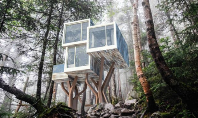 maison arbres la terre du futur. Black Bedroom Furniture Sets. Home Design Ideas