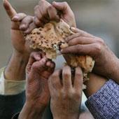 faim dans PETITIONS