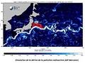 radioactivité japonaise océanique